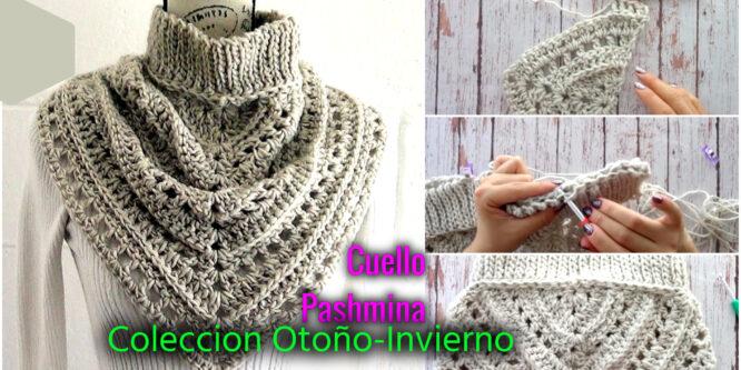 Cuello Estilo Pashmina – Colección Otoño/Invierno